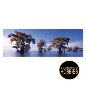 Bald Cypresses ,Edición Alexander Von Humboldt 1000 piezas Panorama Heye 29288